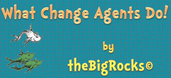 theBigRocks-What-Change-Agents-Do-Banner