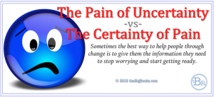 030215 theBigRocks Certainty of Pain Banner