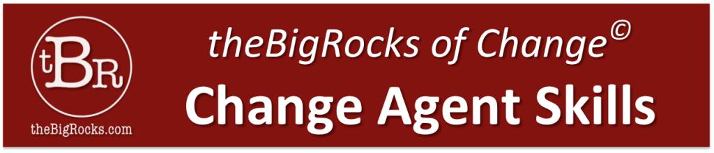theBigRocks Change Agent Skills